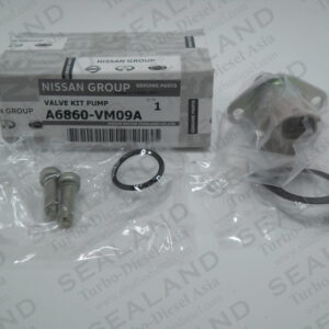 A6860-VM09A NISSAN OVERHAUL KITS for sale